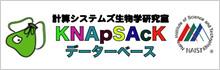 KNApSAcKデータベース